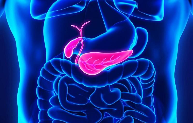 Objawy i przyczyny raka trzustki. Fotografia: medicalnewstoday.com.
