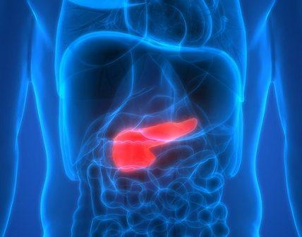 Insulinoma (wyspiak) - objawy i przyczyny powstawania guza insulinowego. Fotografia: www.la-croix.com.
