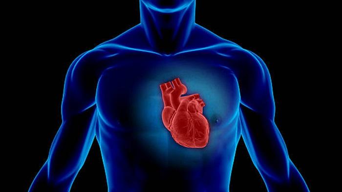 Zapalenie mięśnia sercowego. Fotografia: webmd.com.